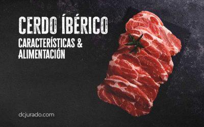 CERDO IBÉRICO, CARARCTERÍSTICAS Y ALIMENTACIÓN