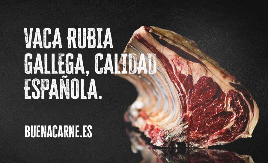 VACA RUBIA GALLEGA, SELLO DE CALIDAD DE ESPAÑA